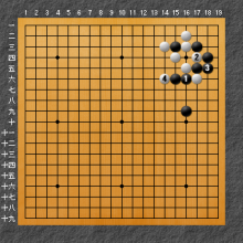 棋聖戦で出現した手