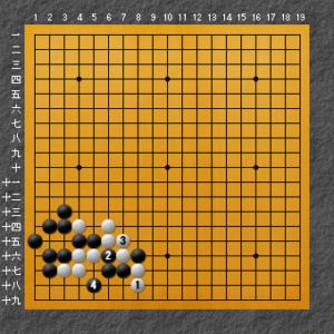 白の失敗図2