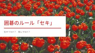 【囲碁】セキのルールを確認しよう【簡単図解!語源や漢字も紹介】