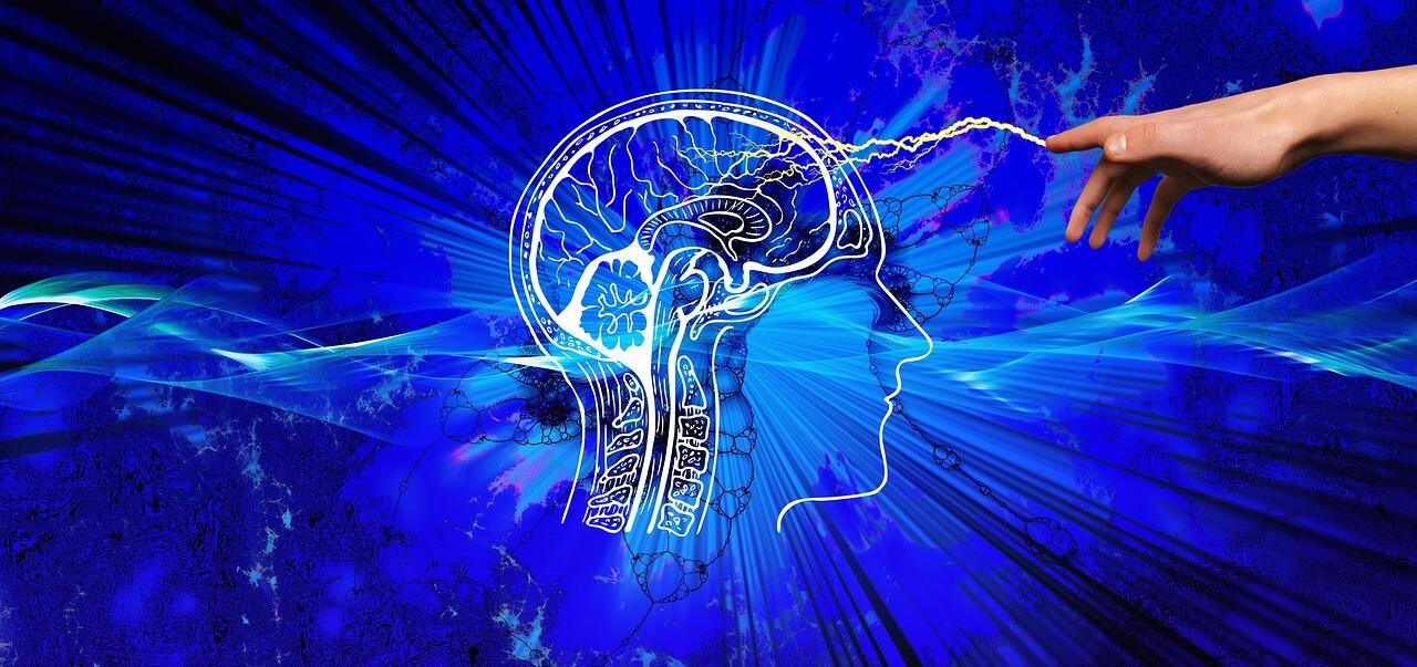 囲碁と将棋での脳への影響の違い