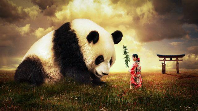 日本ルールと中国ルール