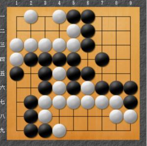 囲碁の整地の説明のためのテーマ図
