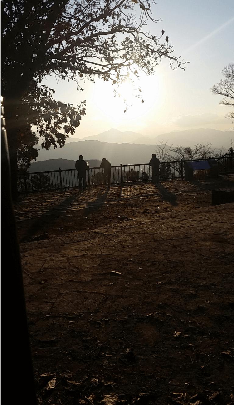 不登校児に遊びに行った高尾山